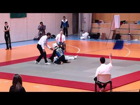 Hapkido EM 2013 Free Fight Category 3