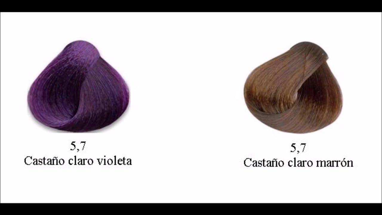 Color De Pelo Cafe Chocolate