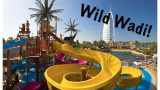 Wild Wadi! Spring break Day 6 [March 18th 2015 | Vlog #15]