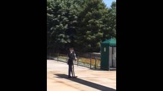 Tomb of the unknown soldier disrespectful audience, guard has to stop to address crowd
