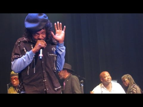 George Clinton and P Funk w/ Sly Stone - I Want to Take You Higher (Live)