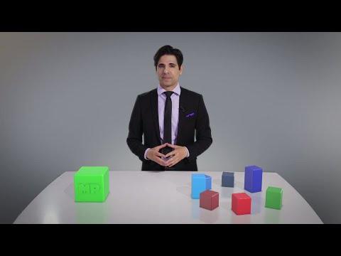 Marcus förklarar - Miljöpartiet på en minut - Nyhetsmorgon (TV4)