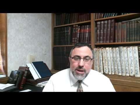 Video Vort - Noach 5777 - Rabbi Etan Tokayer
