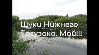 Щуки Нижнего Тогузака. Село Варна. Я опять здесь!!!