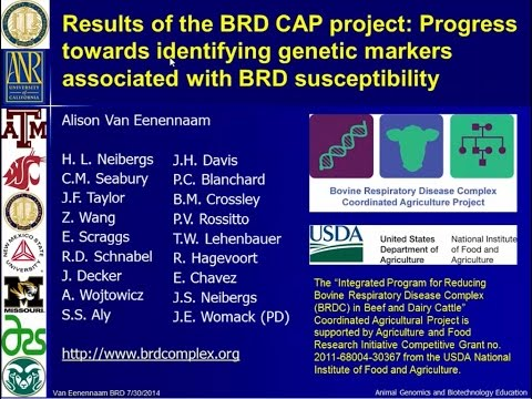 BRD Symposium 2014: Dr. Alison Van Eenennaam