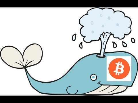 Bitcoin - The Spouting Whale Gets the Harpoon