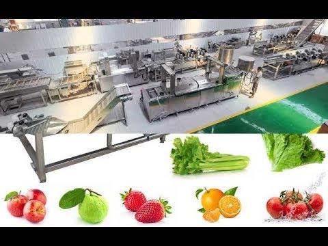 Automatic Vegetable Fruit Washing Machine Factory For Orange, Apple, - Gelgoog Machinery