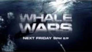 whale wars the Smashing Pumpkins Bullet With Butterfly Wings