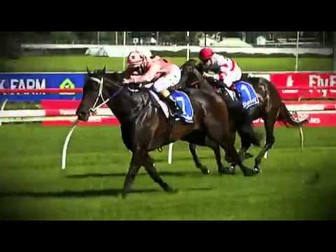 Black Caviar: All 25 Wins
