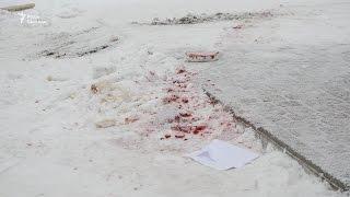 Перестрілка на Житомирщині  Що говорять очевидці