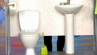 Жить здорово! Как сходить в туалет незаметно.   (26.11.2015)