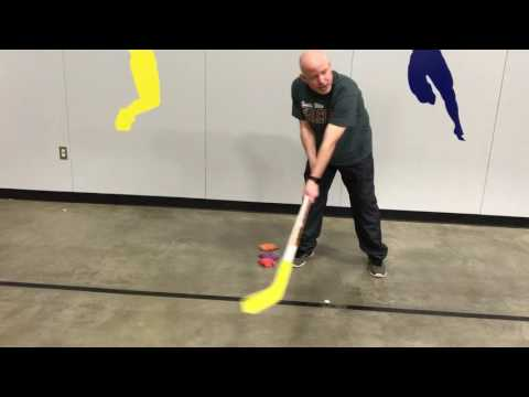 How To Grip And Use A Hockey Stick For Beginners.