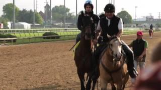 Kentucky Derby Ponies of 2016