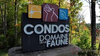 Domaine de la Faune - Condos de luxe