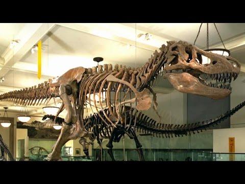 Almanac: T-Rex discoverer Barnum Brown