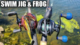 Bank Fishing with Frogs and Swim Jigs (Summer Bass Fishing Tips)