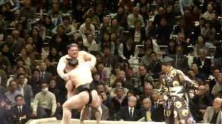 20130113 大相撲初場所初日 日馬富士vs栃煌山 日馬富士も順調.