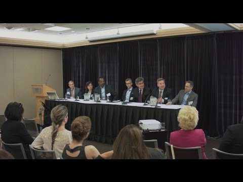 Agile Executive Forum (2016) - Panel Discussion