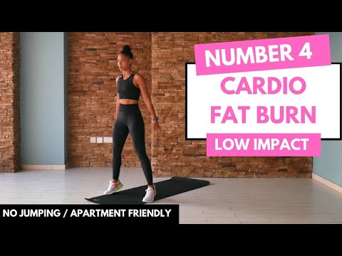 No Jumping LOW IMPACT CARDIO Workout | Beginner Friendly No.4