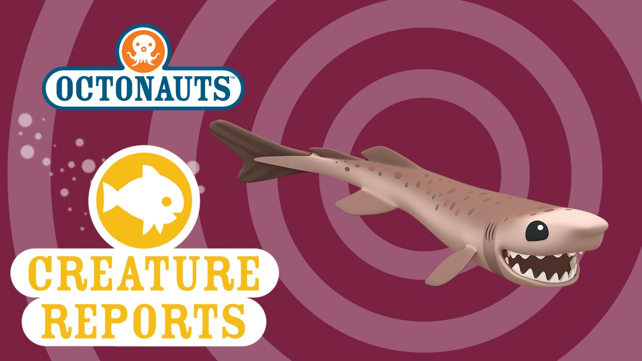 Octonauts: Creature Reports - Cookiecutter Shark - YouTube