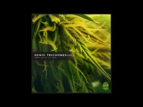 VA - Sonic Trichomes Vol. 2 (Compiled By DJ Kush) [Full Compilation]