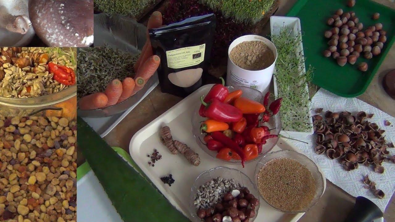 aloe vera schneiden verarbeitung anwendung zubereitung des frischblattes aloe vera