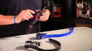 how to add a collar to tri tronics field and pro exp systems