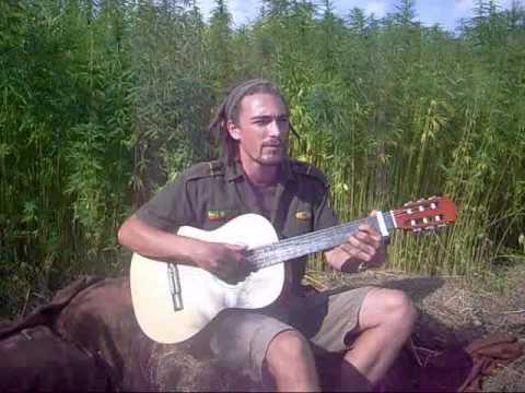 Selassikai - Frei wie der Wind - Hanf , Weed, Cannabis: Legalize it