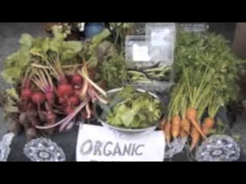 Investigative Media: Organic Farming