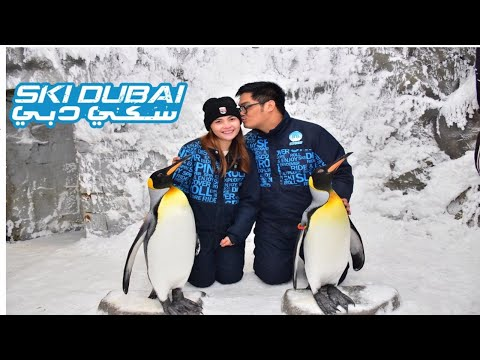 First Time in Snow and Meet the Lovely Penguins (Ski DUBAI)