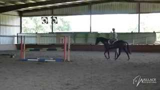 Jump Schooling with David O