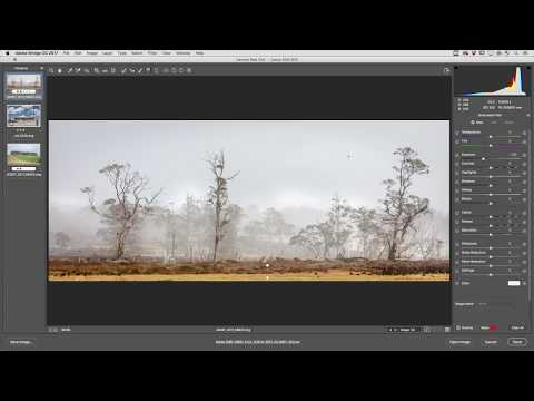 Color and Luminance Range Masking in Adobe Camera Raw