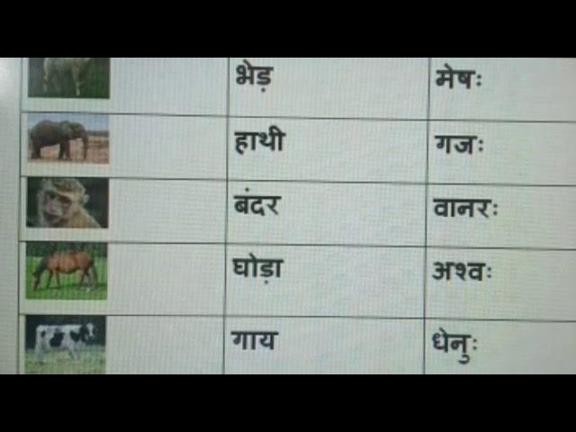22++ Sanskrit names for animals ideas