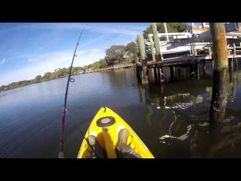 How I Find And Fish Docks In Tampa Bay