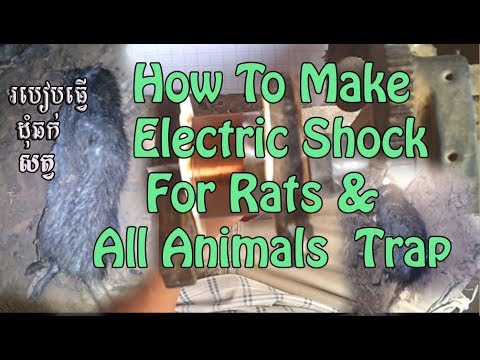 How To Make a High Voltage Mouse Trap ​/​ Electric Shock For Rats & All Animal Trap /មូទរ័ឆក់កណ្តុរ