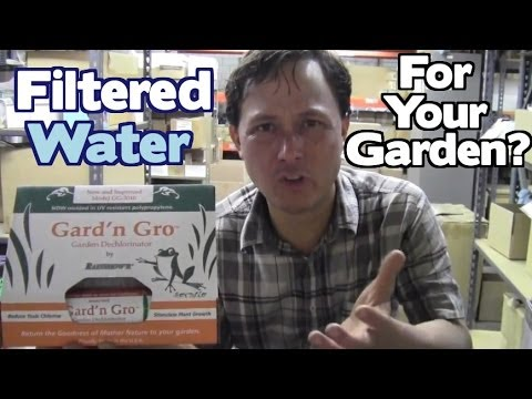 Why You Should Use a Water Filter in Your Garden and Shower