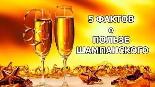 Сколько выветривается шампанское из организма человека?