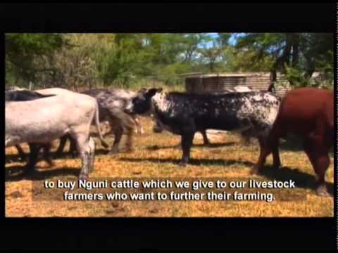 Living Land 8 - Episode 24: Phenomenal agricultural potential of Limpopo