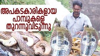 Wow ! Vava Suresh Releasing Dangerous Snakes | Snake Master