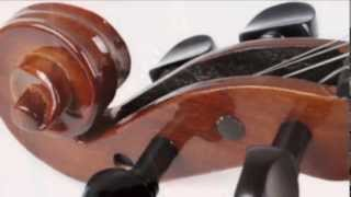 Violin Pieces in Indian Songs...