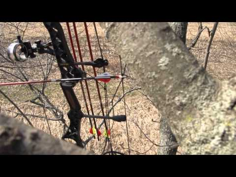 Become Invisible to Whitetail Deer While on the Hunt
