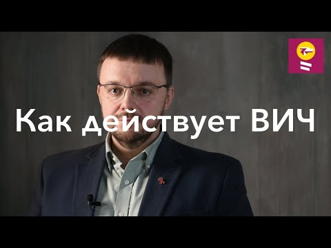 Как действует ВИЧ - Данила Коннов // стадия острой инфекции, вторичные заболевания, СПИД, иммунитет