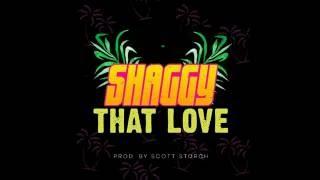 Shaggy - That Love Lyrics (New Love Songs 2016)