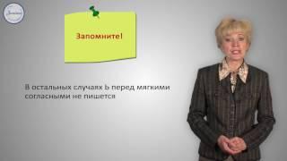 Русский язык 10 класс. Разделительные Ъ и Ь