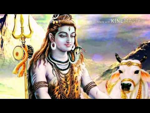 Shiv Shankar Ki Baraat Aa Gayi (Reggation Mix) {Mix Y} Dj Akash Bhopal 9755876812