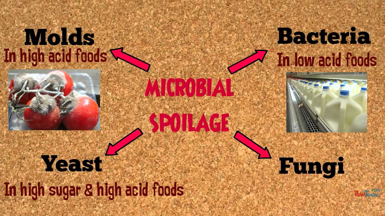 microbial spoilage Abstract a microbiological study of organisms associated with spoilage of fresh  fish samples collected from two ponds located in benin city, nigeria was carried .