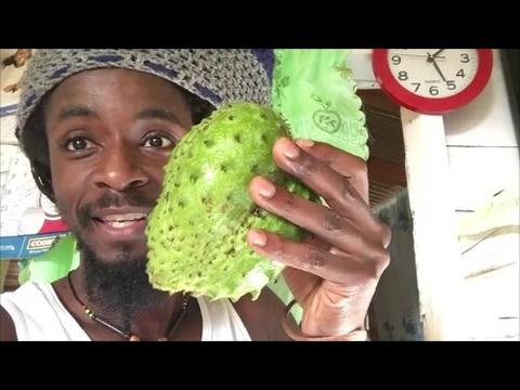 Zayloc23 Jamaica Adventures!!! (Part 1)