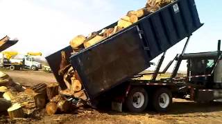 Firewood Arriving - Dump Truck Unloading Logs