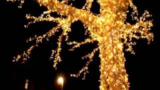 Светодиодные гирлянды с эффектом мерцания(www.grand-bolivar.com.ua Светодиодные гирлянды с эффектом мерцания создают по-настоящему сказочную атмосферу. Гирля..., 2011-11-01T19:32:42.000Z)