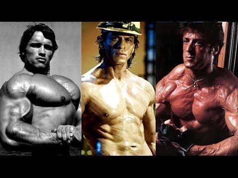 Shahrukh Khan Challenges Sylvester Stallone Arnold Schwarzenegger